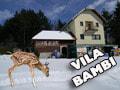 Vila Bambi