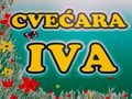 Cvecara Iva Nis