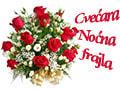 Cvećara Noćna Frajla