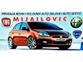 Prodavnica auto delova Mijailović