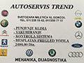 Auto mehanicar Trend