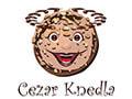 Cezar Knedla