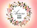 Centar za negu i oblikovanje tela Aurora Studio 888