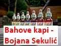 Bahove kapi - Bojana Sekulić