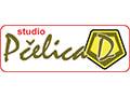 Studio Pčelica D škola stranih jezika