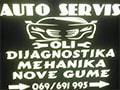 Oli Auto servis