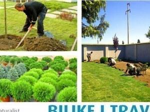 4. Sadnja bijaka i zasnivanje travnjaka