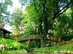 5. Japanski vrt - Botanička bašta