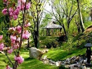 6. Japanski vrt - Jevremovac