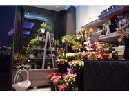 Merci Flower and Gift shop Beograd