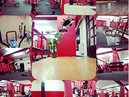Orca Gym and Fitness slike