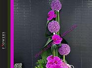 Cvecara Flowers Silver Pack