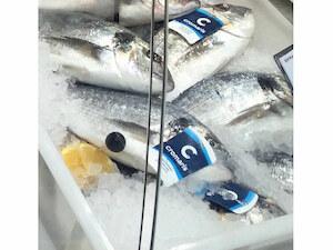 Veleprodaja sveže ribe Bio fish