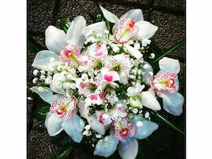 Cvećara NECA