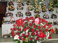 Cvećara Esperanca