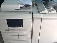 Dinex DOO stamparija