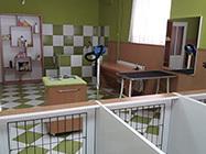 Salon za negu pasa Maza i Lunja