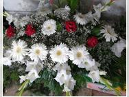 Kika cvećara