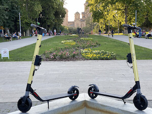 BEES SCOOTERS