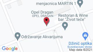 Auto servis Dragan NS