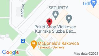 Privatni časovi - Viktor Sistem
