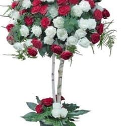 101 ruža u obliku stabla - Glamur, Glamur !