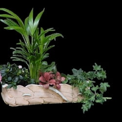 Saksijsko cveće - Vrt u keramičkoj unikatnoj posudi