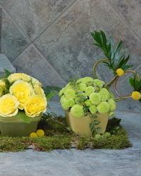 Jesenji cvetni aranžmani - Cvetni aranžmani u keramičkim posudama