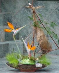 Jesenji cvetni aranžmani - Cvetni brod
