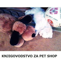 Knjigovodstvo za pet shop