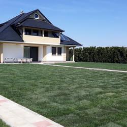 Tepih travnjak u dvoristu kuce