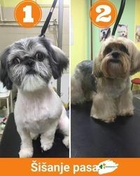 Koja frizurica vam se više sviđa, 1 ili 2?