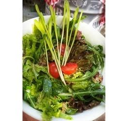 Obrok salate u konobi Riba Ribi Grize Rep