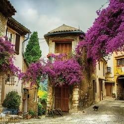 City Gassin Provence France Historic House Francuska Provansa  3D fototapeta zidni mural foto tapeta