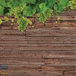 Vine grape tree wall grozdje vinova loza drvo 3D fototapeta zidni mural foto tapeta