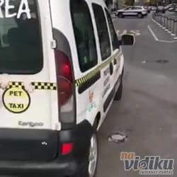 Prevoz pasa u Srbiji