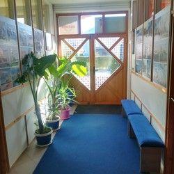 Škola engleskog jezika Rocktown Language School Sremska Kamenica