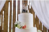 Kako muškarci vide dan venčanja?