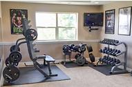 Vežbanjem do savršenog zdravlja i holivudskog izgleda!